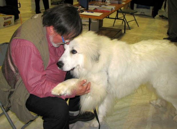 Banjo, a 22-month-old great Pyrenees puppy lobbying for a dog park on Saturday in Bethel, gets some attention from Doug Farrar of Bethel during the Community & Business Expo inside the gym at Telstar High School in Bethel. Farrar is a member of the Bethel Dog Park Committee.