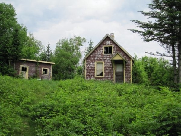 The old fire lookout cabin and woodshed on Big Spencer Mountain near Kokadjo, Maine, being reclaimed by nature during the summer of 2009.