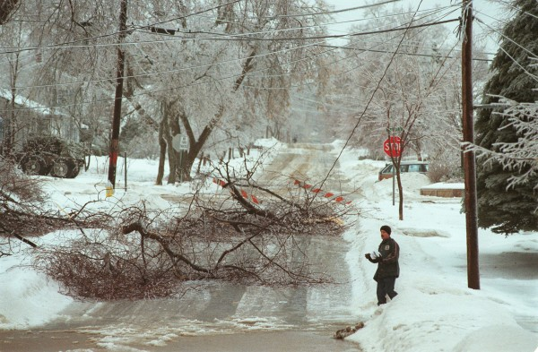 A postal carrier makes his appointed rounds despite the tangle of trees and wires along his route on Lincoln Street in Bangor on Jan. 8, 1998.