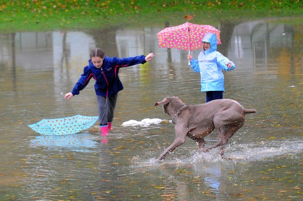 Anna MacDonald, 9, (left) and her sister Abby, 7, play in the floodwater with their dog Colby after the heavy rain flooded part of Broadway Park in Bangor Saturday. Their parents, Linda and Chris MacDonald, said that they saw the water in the park and decided to go for a walk.