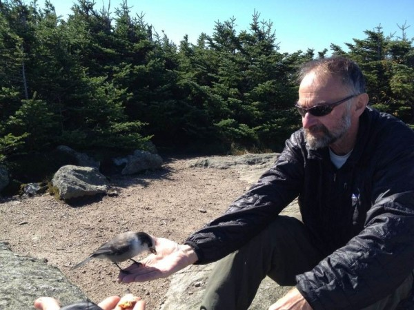 Neil LeBlanc of Swanville feeds grey jays on Mount Lincoln in New Hampshire while hiking the Appalachian Trail in 2012 with his fiance Holly Todd.