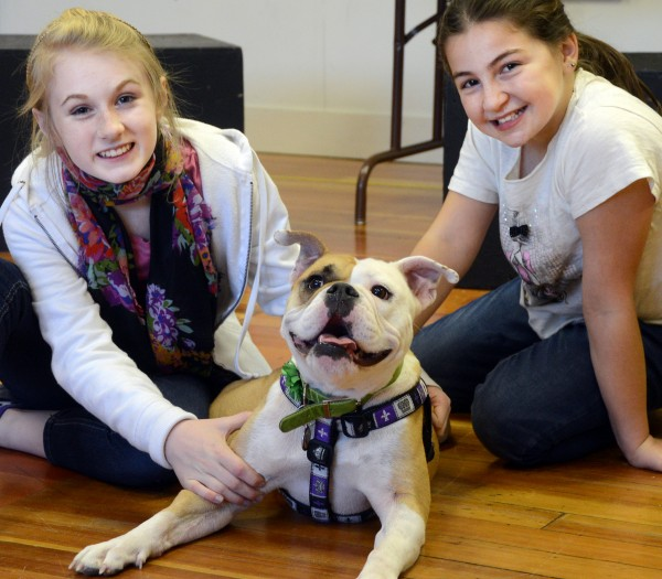 Kate Fogg (left) and Lana Sabbagh post with English bulldog ZuZu, who plays Sandy with Fogg and Sabbagh's Annie, in Penobscot Theatre's production of &quotAnnie.&quot