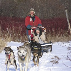 Augusta kennel offers lessons in dog sledding