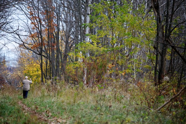 A man walks through the 12 acre wooded parcel known as Canco Woods in Portland Monday Nov. 5, 2012.