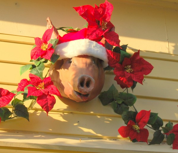 It's just not the holiday season in the Hancock County community of Gouldsboro until the arrival of the Christmas pig that each year decorates Rick and Beverly Henion's front doorway. The couple dress their porcine ornament throughout the year to match the seasons. Before donning the Santa hat, &quotPorky&quot sported a blaze orange stocking cap to mark hunting season. When influenza becomes a local problem, on goes a surgical mask. Come Christmas, out comes the Santa hat. There are no twinkling lights, but nonetheless this little piggie has become a holiday fixture for those traveling West Bay Road.