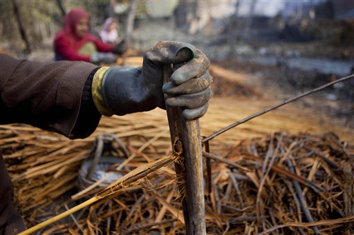 A Kashmiri Muslim woman (only hand seen) peels the skin of wicker sticks on the outskirts of Srinagar, India on Friday, Nov. 9, 2012. Wicker is used for making traditional firepots called Kangir in Kashmir. Kashmiris use these traditional firepots to keep themselves warm during the severe winter months.