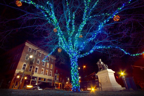 At Longfellow Square a tree wrapped in blue lights frames a statue of the poet Thursday morning, Nov. 29, 2012, in Portland.