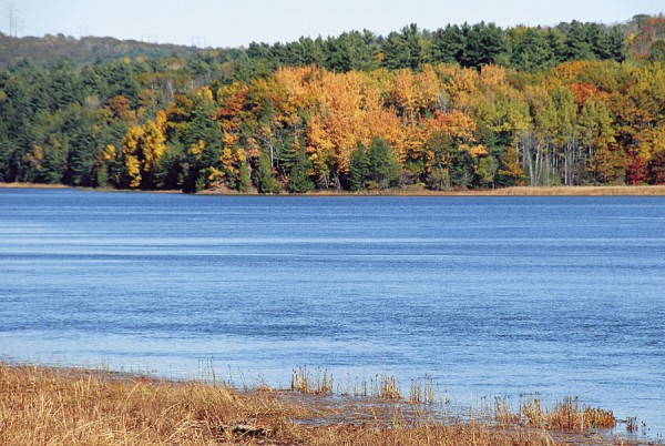 Viewed from Water Street in Winterport, the Penobscot River flows between the Winterport shore and the yellow-painted woods of North Bucksport.