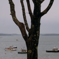 Mass. community holds vigil for Deer Isle fishermen