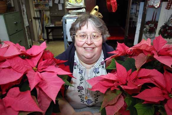 Deb Nisbett, president of the Maine State Florists and Growers Association and owner of Chadwick Florist and Greenhouses in Houlton, is raising funds to fight breast cancer through the sale of pink poinsettias this holiday season. More than two dozen florists statewide have joined the cause.