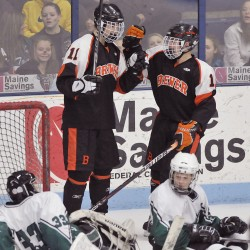 Unbeaten Brewer not overconfident entering state hockey final