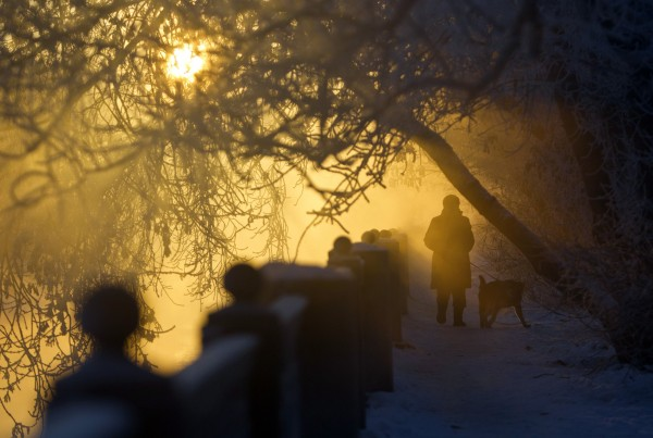 A woman walks with a dog on the embankment of a river, with the air temperature at about minus 9.4 degrees Fahrenheit, in Moscow on Dec. 24, 2012. Russia is enduring an abnormally cold winter, the most severe in more than 70 years, according to local media.