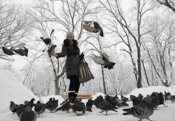 A woman feeds pigeons in a snow-covered park in Kiev, Dec. 25, 2012.