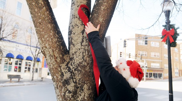 One of The Bangor Elves decorates a tree in downtown Bangor Saturday morning. The Bangor Elves are back for another year of anonymous giving to community members in need.