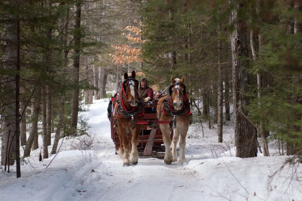 Just hear those sleigh bells ringing and jing ting tingaling too