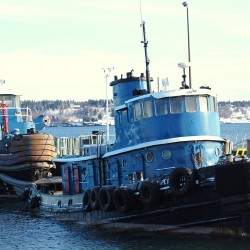 Officials examine Dutch ship in Eastport