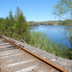 A view looking north along the former Belfast & Moosehead Lake Railroad line. The Belfast City Council is considering building a pedestrian walkway along the rail line.