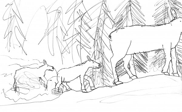 This illustration of Maine moose by Asher Molyneaux of East Machias captures an experience he had while hiking the Appalachian Trail with his father, Paul Molyneaux, in 2010. At the time, Asher was 8 years old. This drawing and several others is included in &quotA Child's Walk in the Wilderness&quot by Paul Molyneaux, published February 2013.