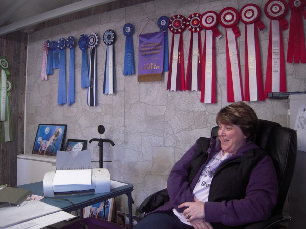 Tracey Milliard works beneath a backdrop of ribbons earned at shows across the country by prize-winning alpacas from Spudland Alpacas in Blaine.