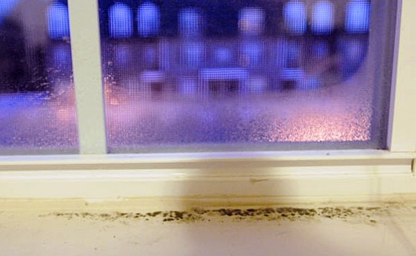 Mold on the windowsill of an apartment at The Grove apartment complex in Orono.