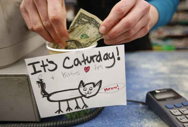 A cashier who fancies felines created a silly card to hang on the tip cup at Colucci's Hilltop Superette on Congress Street in Portland on a weekend in January.