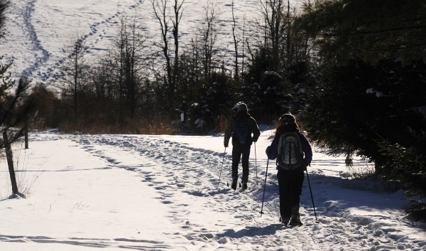 People enjoy an early afternoon ski in the Bangor City Forest on Monday, Jan. 7, 2013.
