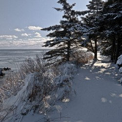 Snow covered trailhead to the scenic Coastal Trail at Quoddy.
