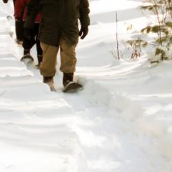Snowshoeing along the Wabanaki Trail at Hirundo Wildlife Refuge. Photo by G. Keszöcze