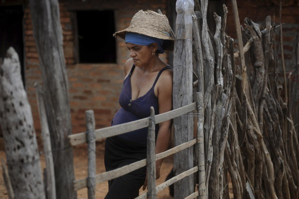 Farmer Maria Silva, 48, leans on her gate as she talks about the drought in the town of Canudos, Brazil, in the part of Bahia State declared to be in a drought emergency, on Thursday, Jan. 15, 2013. Silva said she is living off government aid as most of her animals have died. Brazil's northeast is suffering its worst drought in decades, threatening hydro-power supplies in an area prone to blackouts and potentially slowing economic growth in one of the country's emerging agricultural frontiers. Lack of rain has hurt corn and cotton crops, left cattle and goats to starve to death in dry pastures and wiped some 30 percent off sugar cane production in the region responsible for 10 percent of Brazil's cane output.
