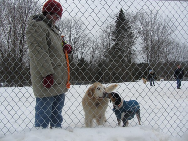 Angie Ferris stands with dogs Rosie and Maddy at the dog park in Rockportn created by the PAWS Animal Adoption Center.