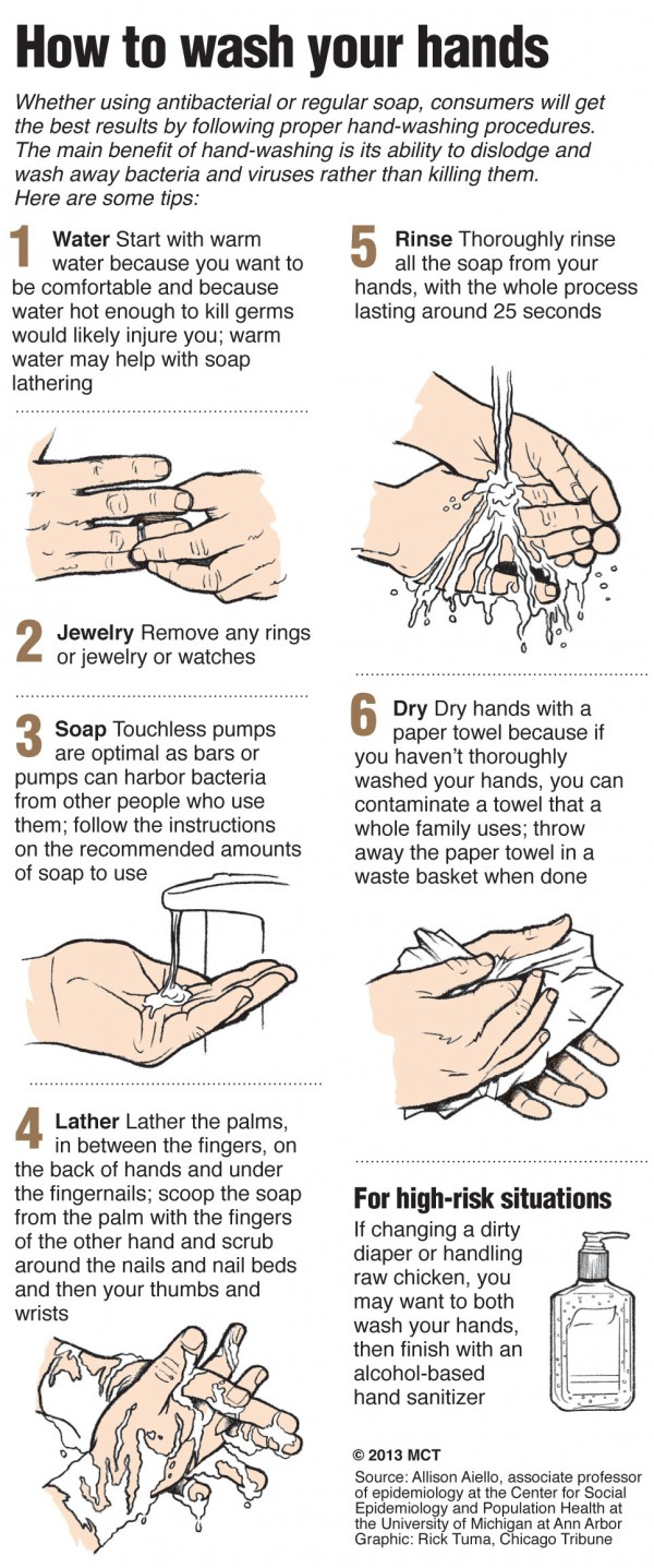 Graphic illustrates step-by-step the best way to wash your hands; scientists are increasingly concerned that a common anti-bacterial ingredient called triclosan may harm people's health and there is no evidence that hand-washing with soap containing triclosan or other anti-microbial ingredients offers any health advantages over regular soap and water.
