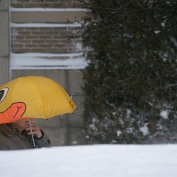Portland gets record snowfall, but Gorham has deepest snow with 35.5 inches