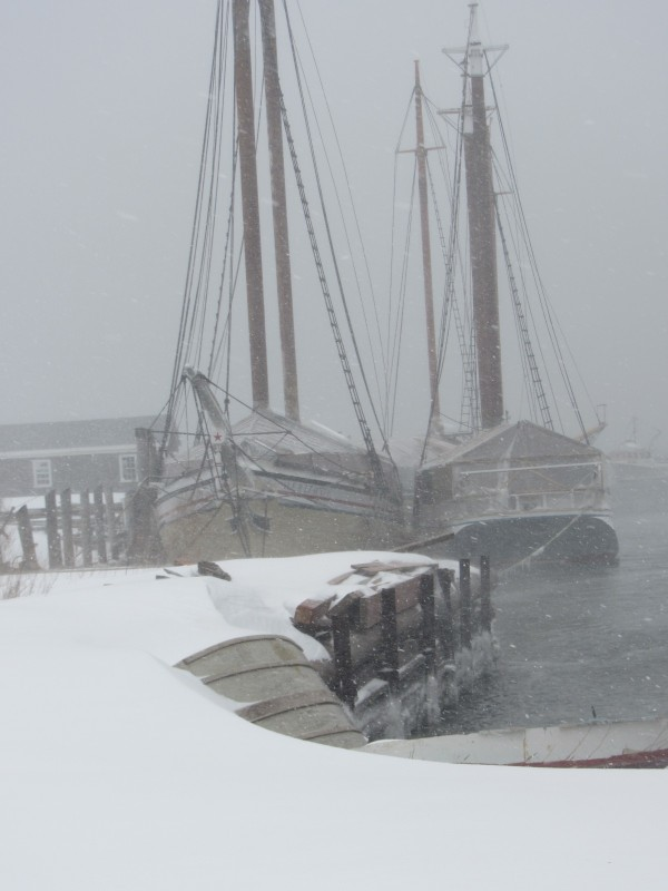 At North End Shipyard, schooners are covered while docked in a protected section of Rockland Harbor.