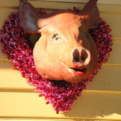 "Rick and Beverly Henion's ceramic pig, ""Valenswine,"" recently sported this red, heart-shaped bling ensemble for Valentine's Day in Gouldsboro."