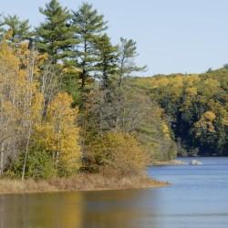 Yellow leaves are the dominant color along the Penobscot River in Winterport (left) and Orrington (right) on Oct. 17, 2012. The Penobscot Nation is seeking an injunction to stop Maine game wardens from policing the river and preventing tribal members from engaging in sustenance fishing.