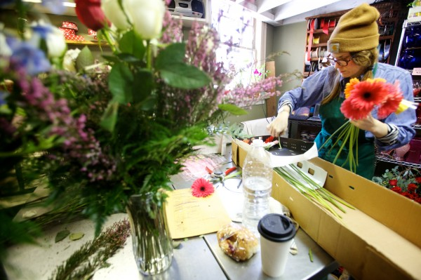 Sawyer & Co. floral designer Dee Clements unpacks daisies Thursday, Feb. 14, 2013 on Congress Street in Portland.