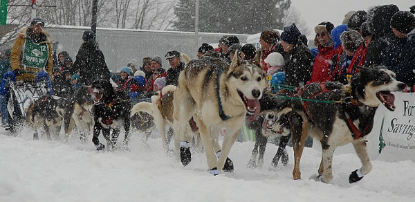 Teams were running through up to 10-inches of new snow Saturday at the start of the Can Am Crown International sled dog races in Fort Kent. CAC 250 winner Ryan Anderson arrived in Fort Kent at 8:10 Monday morning.