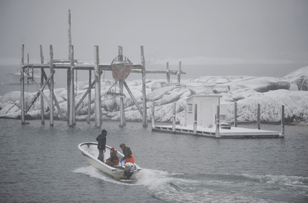 Billy Damon, Makayla Gordon and Ben Waite pilot a small boat through Stonington Harbor on their way to fill lobster boats with bait from Damon Lobster Co. on Sunday during a snowstorm.