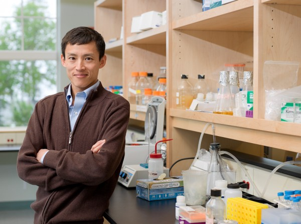 Mount Desert Island Biological Laboratory researcher Voot Yin will serve as chief scientific officer of Novo Biosciences.