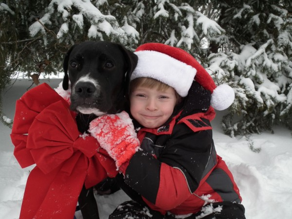 Owen Sherman hugs his dog, Eli. Owen, who turned 7 years old on Monday, will donate the money he received for his birthday to the Connecticut Underhound Railroad, where he received his dog from.