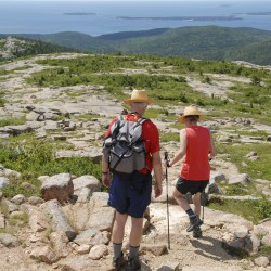 Acadia National Park officials consider new headquarters