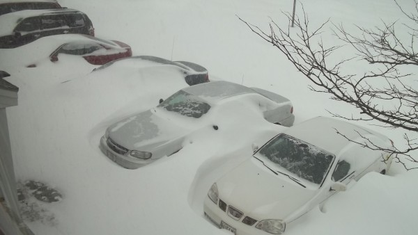 Cars are snowed in around 9 a.m. on Saturday near Griffin Road in Bangor.