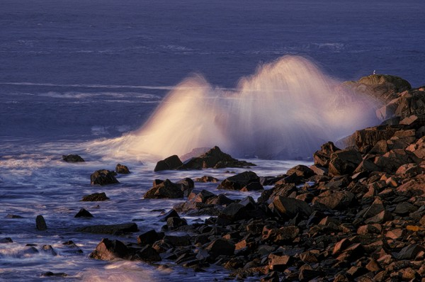 First sunlight reflecting on ethereal and silky crashing wave at Quoddy Head State Park