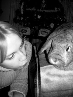 Cottontail Cottage Rabbit Rescue