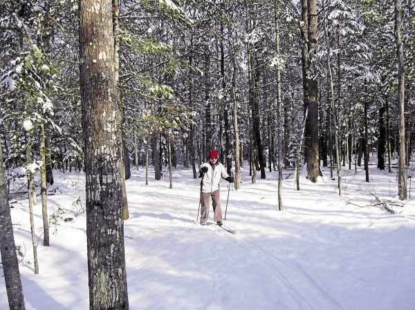 David Lunn skis in the Bangor City Forest on a recent Thursday.