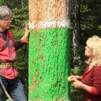Trenton's lumberjacks, jills take logging to the 'Extreme'