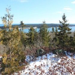 Maine hopes to get families hiking on New Year's