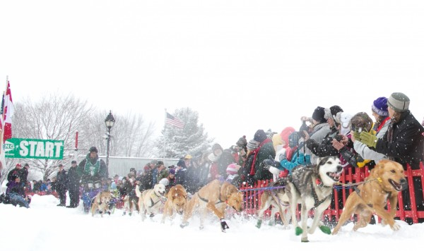 Andre Longchamps and his team start a Can-Am Crown sled dog race on Main Street in Fort Kent on Saturday, March 2, 2013.