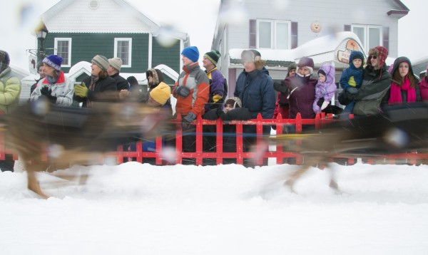 Spectators cheer as sled dogs race by on Main Street during the start of the Can-Am Crown 250-mile dog sled race in Fort Kent on Saturday, March 2, 2013.