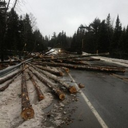 Train, logging truck collide in Aroostook County